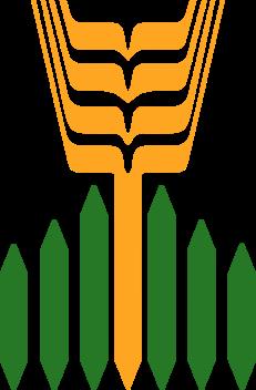 agromil-cereali-lolla-di-riso-pavia-italia-produzione